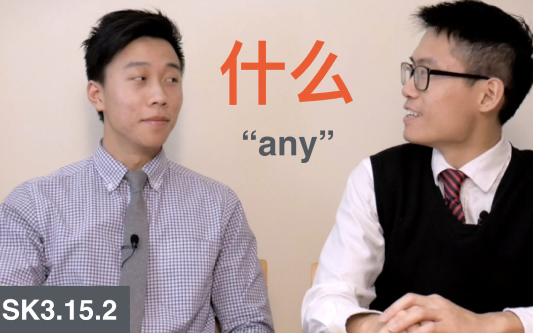 HSK 3 Intermediate Chinese Grammar 3.15.2 Flexible Use of Interrogative Pronouns Part 2