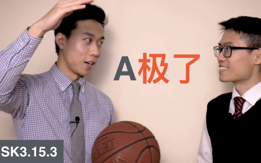 HSK 3 Intermediate Chinese Grammar 3.15.3 Indicating Degree with 极了